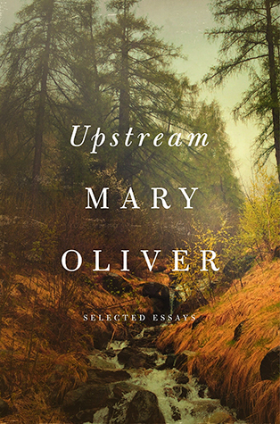 Cover of Upstream